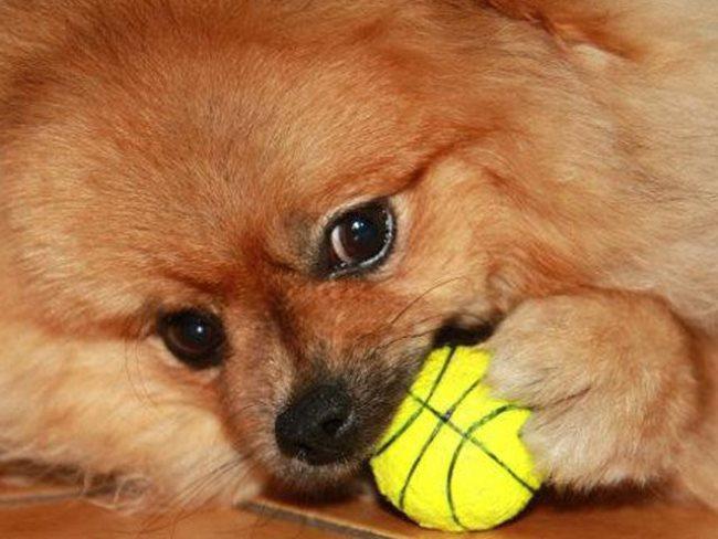 С мячиком